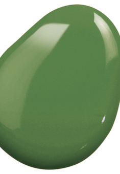 Clever Color Nail Polish CC 9 in 1, Lime Green
